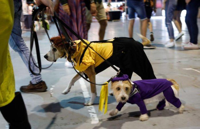 La Nueva España. Desfile «Cómic Dog» en Metrópoli
